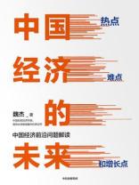 中国经济的未来:热点、难点和增长点