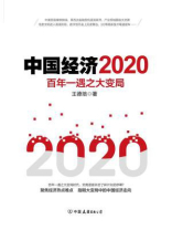 中国经济2020
