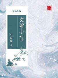 文学小言(精品公版)