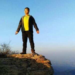 大王叫我来巡山