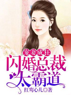 宠妻成狂:闪婚总裁太霸道