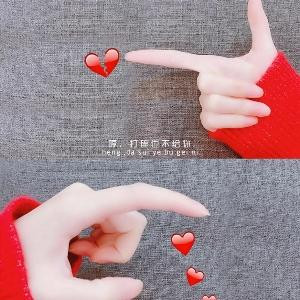 飞羽vs轻丝