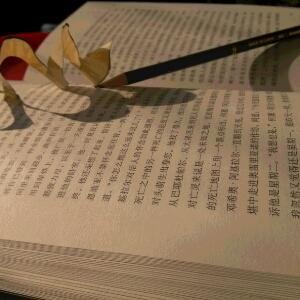 蜗牛小书虫