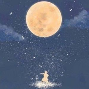 愿有满天星辰