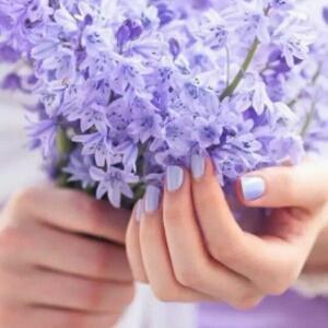 淡紫色的忧伤